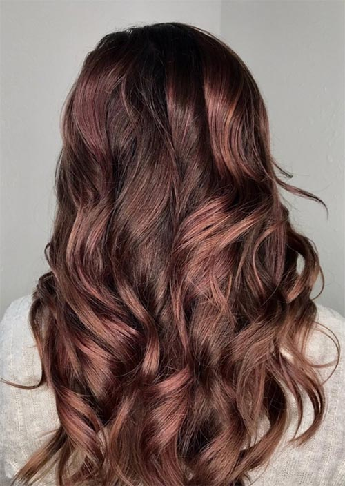 Medium Raspberry Brown Hair Color | Find your Perfect Hair ...