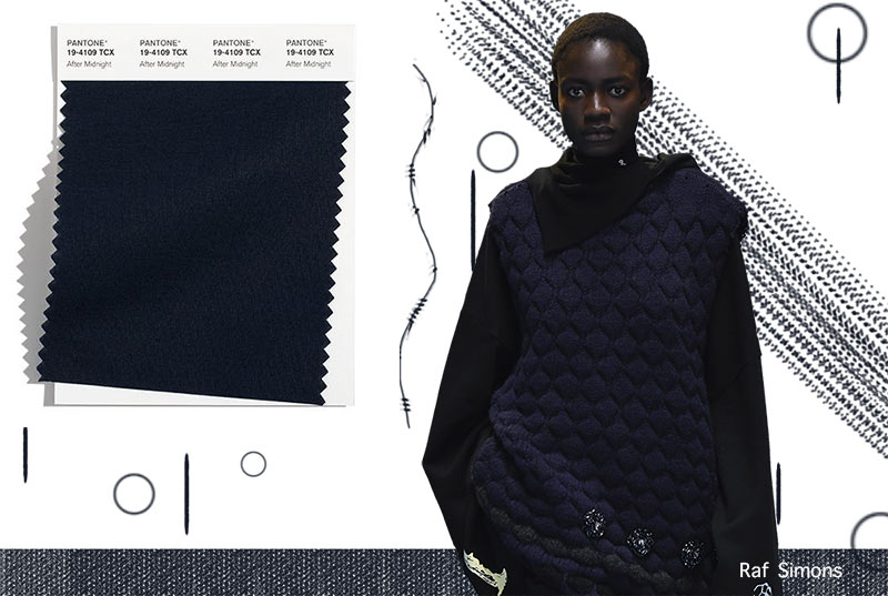Fall/ Winter 2021-2022 Pantone Color Trends: After Midnight